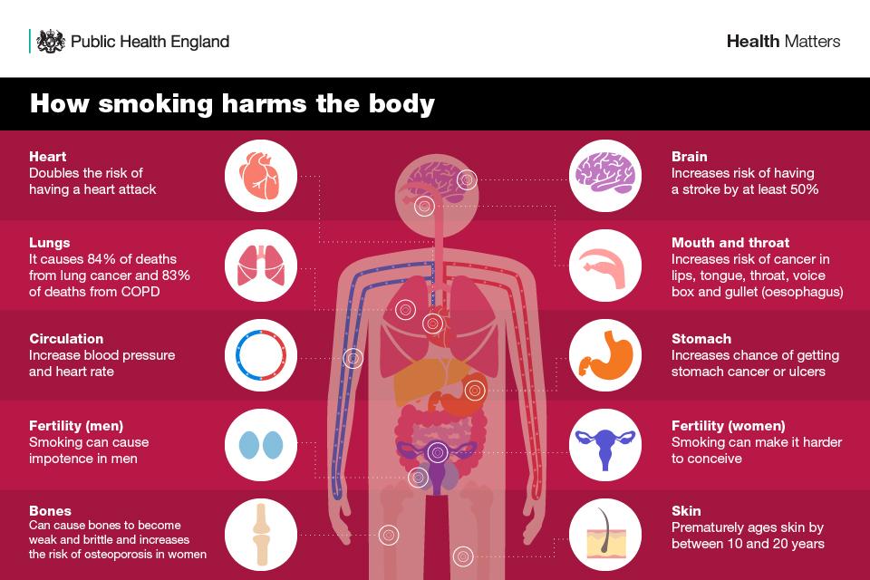 smoking harms the body